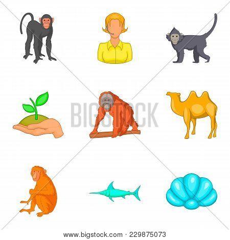 Vital World Icons Set. Cartoon Set Of 9 Vital World Vector Icons For Web Isolated On White Backgroun