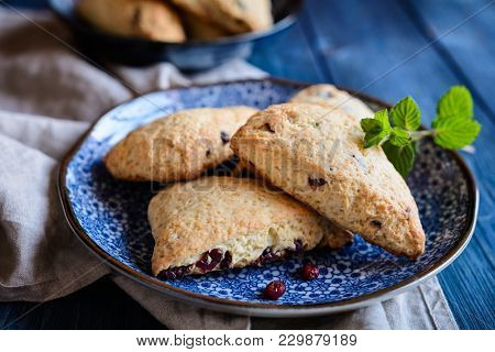 Homemade Irish Scones With Cranberries