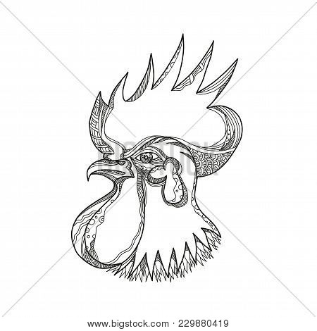 Doodle Art Illustration Of Head A Junglefowl; ,ooster, Cockerel Or Male Chicken, A Male Gallinaceous
