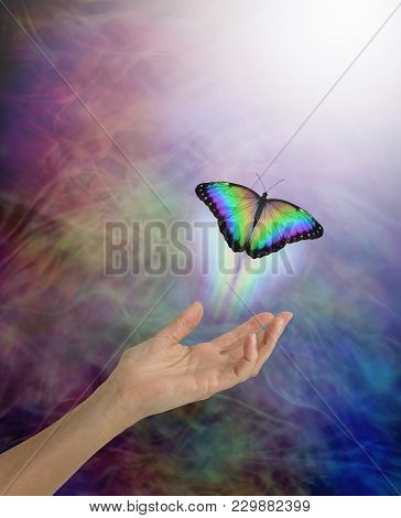 Soul Passing Over To The Afterlife Metaphor - Female Open Palm Hand With A Lone Rainbow Coloured But