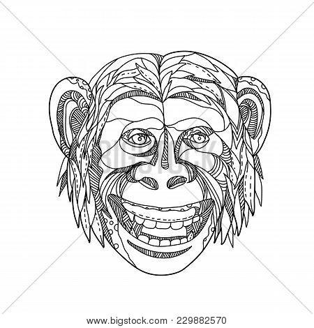 Doodle Art Illustration Of Head Of A Humanzee, Apeman Caveman Or Neanderthal, A Chimpanzee/human Hyb