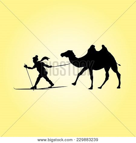 Skier And Camel. Desert Silhouettes, Vector Illustration Of Human Pulling Animal