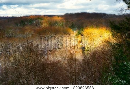 A Patch Of Sun Lights Up The Tinkers Creek Gorge In The Bedford Reservation, A Cleveland Area Metro
