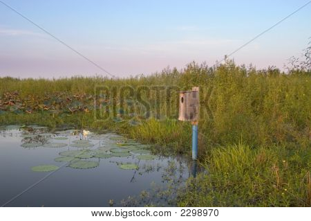 Birdhouse On The Water