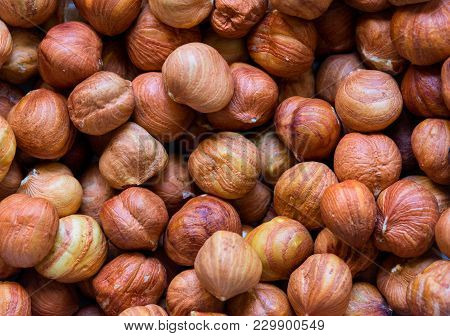 Hazelnut Pile Closeup. Hazelnut Photo Background. Organic Food Rustic Banner Template. Tasty Healthy