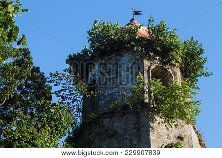 Old Church Tower In Green Bush. Spanish Dome Tower On Blue Sky. Historical Building In Gothic Style.