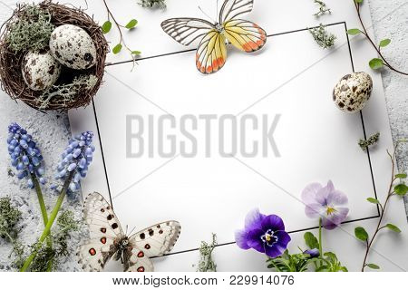Quail nest with eggs,butterfly and spring flower on blank card
