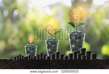 Financial Golden Bitcoins Ladder Growth Concept Crypto Currency Bitcoins Blockchain Technology.