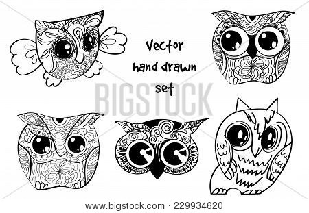 Vector Set Of Tattoo Henna Hand Drawn Owl.