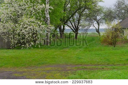 Landscape With An Earth Roads In Rural Ukrainian Area At Spring Season.