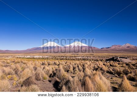 Bolivian Panoramic: High Andean Tundra Landscape In The Mountains Of The Andes. The Weather Andean H