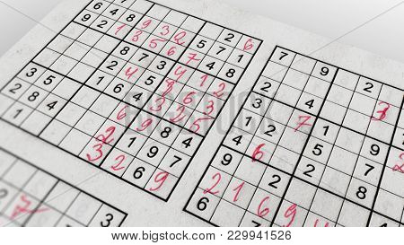Sudoku Game With Puzzling Networks Of Numbers