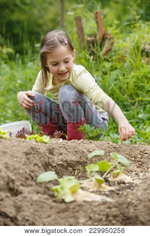 Little Girl Having Fun In The Garden, Planting, Gardening, Helping Her Mother. Happy, Natural Childh