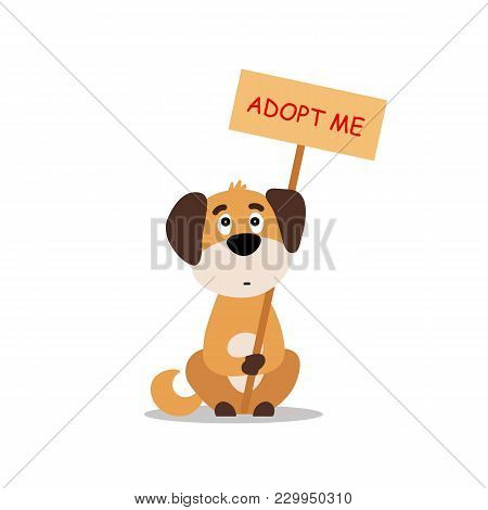 Sitting Dog With A Poster Adopt Me. Dont Buy - Help The Homeless Animals Find A Home, Sad Puppy - Ve