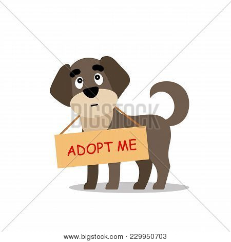 Standing Dog With A Poster Adopt Me. Dont Buy - Help The Homeless Animals Find A Home, Sad Puppy - V