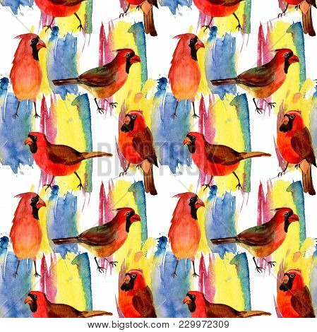 Sky Bird Red Cardinal Pattern In A Wildlife By Watercolor Style. Wild Freedom, Bird With A Flying Wi
