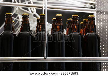 Bottles of beer in brewery