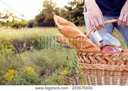 Summer - Girl With A Basket Goes On A Picnic