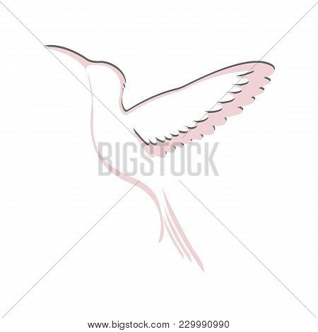 Hummingbird Logo. Flying Hummingbird Pink And Gray. Element For Design, Vector Illustration.