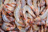 A pile of raw shrimp at market with creative depth of field poster