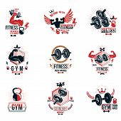 Set of vector fitness workout and weightlifting gymnasium theme logotypes and inspiring posters made using dumbbells, disc weights sport equipment and muscular athlete body silhouettes. poster