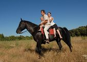 family on a black stallion in a field poster