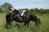 young teenager and her best friend black stallion poster