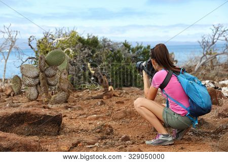 Galapagos tourist taking pictures of Land Iguana eating plant on North Seymour Island Galapagos Islands. Amazing animals and wildlife on Galapagos Islands, Ecuador. Galapagos cruise ship.