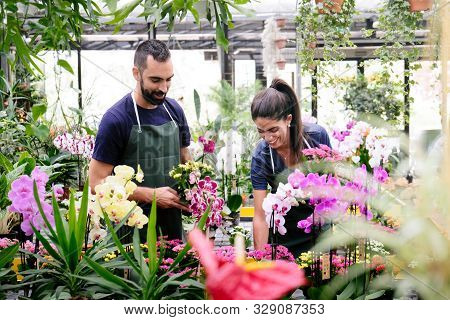 Teamwork With Happy Co-workers At Work In Florist Shop