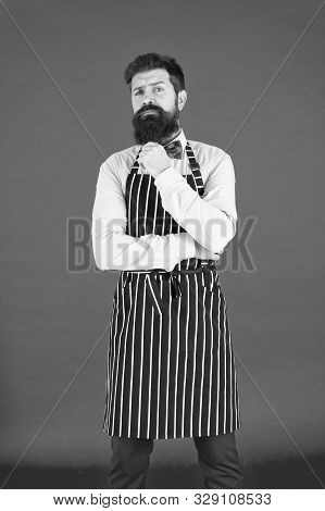 The Apron Is Just Part Of My Kit. Stylish Waiter In Elegant Bow Tie And Bib Apron. Bearded Man Weari