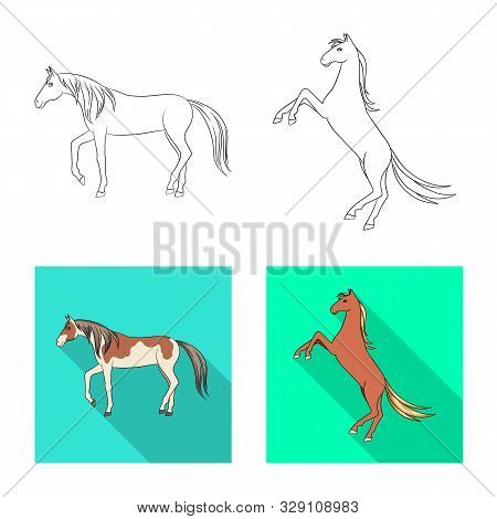 Vector Illustration Of Breed And Equestrian Symbol. Set Of Breed And Mare Stock Symbol For Web.