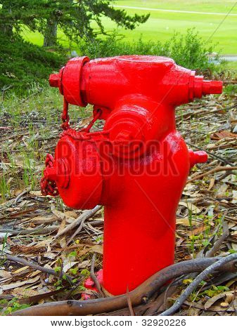 Red Firehydrant
