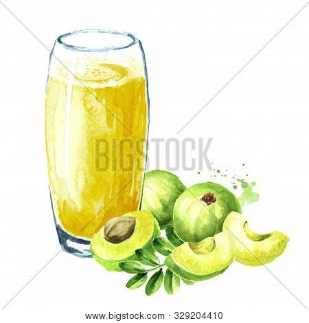 Gooseberry Or Amla Juice With Fresh Ripe Fruits. Watercolor Hand Drawn Illustration Isolated On Whit