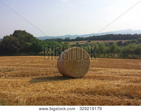 Straw Bale In A Field In Ampurdán, Gerona, Spain. The Golden Round Bale Contrast With The Blue Sky.
