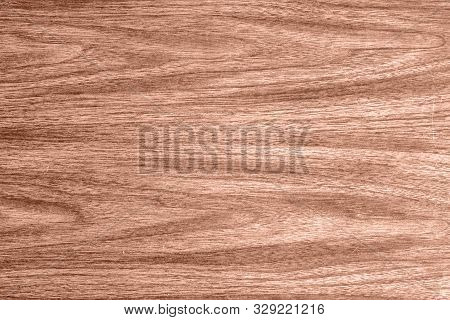 Wood Pattern Texture Background, Plywood Surface In Natural Pattern, Hard Wood