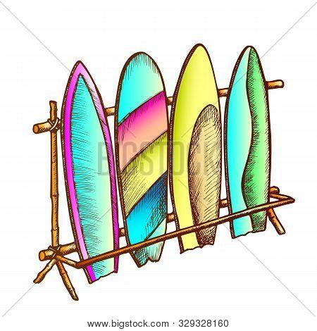 Surfboards In Different Design On Rack Color Vector. Assortment Surfboards Standing Locked In Storag
