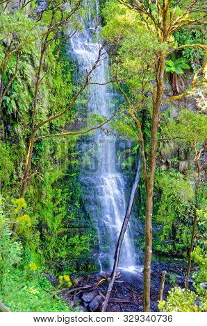 Erskine Falls Is A 30-metre Waterfall Cascading Into A Gully - Lorne, Victoria, Australia