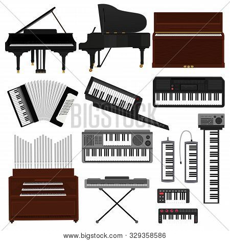 Keyboard Musical Instrument Vector Musician Equipment Piano Of Orchestra Synthesizer Accordion Class