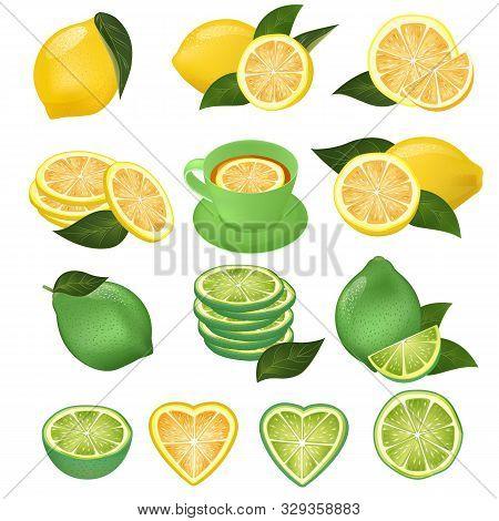 Lemon Vector Green Lime And Lemony Sliced Yellow Citrus Fruit And Fresh Juicy Lemonade Illustration