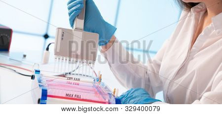 Loading Samples and Running an Agarose Gel for electrophoresis, Gel electrophoresis is the standard lab procedure for separating DNA poster