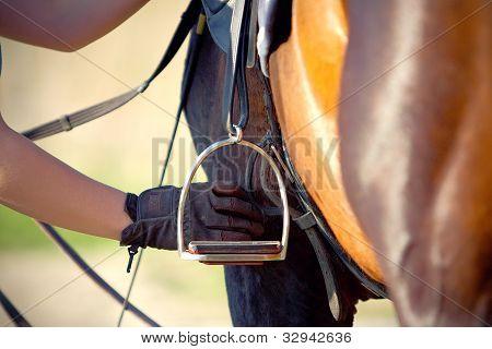 Saddle With Stirrup