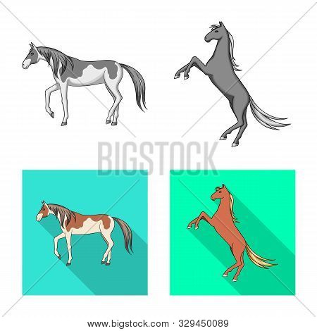 Vector Illustration Of Breed And Equestrian Symbol. Collection Of Breed And Mare Stock Vector Illust