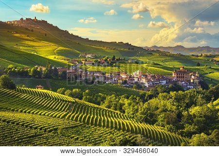 Langhe Vineyards Panorama, Barolo Village, Unesco Site, Piedmont, Northern Italy Europe.