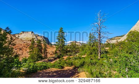 The White Peaks Of The Sandstone Mountains And Mesas Along The Zion-mt.carmel Highway On The East Ri