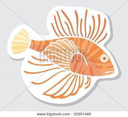 Vector color fish.