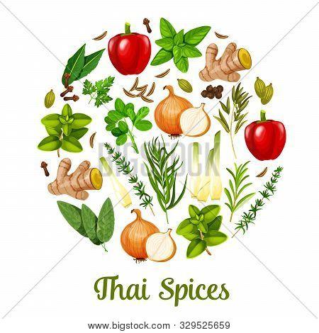 Thai Spices And Herbal Cooking Ingredients, Herbs And Seasonings. Vector Paprika Or Bell Pepper, Lem