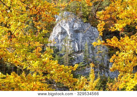 A Rock In The Shape Of A Male Face In An Autumn Forest. Kvacianska Valley In Liptov Region Of Slovak