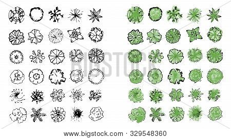 Various Trees, Bushes And Shrubs, Top View For Landscape Design Plan. Vector Illustration, Isolated