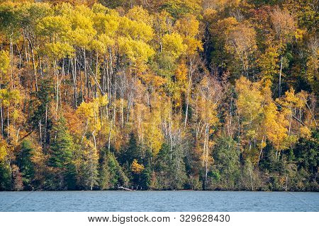 Fall Colors On Trees As Far As The Eye Can See On The Apostle Islands National Lakeshore In Wisconsi