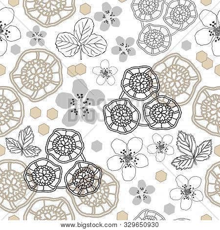 Lace Flower Field-flowers In Bloom, Seamless Repeat Pattern. Delicate Lace Shapes And Dewberry Bloss